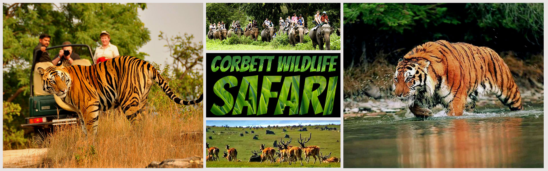 Corbett Wildlife Safari